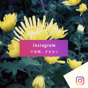 いろや商店の公式Instagram