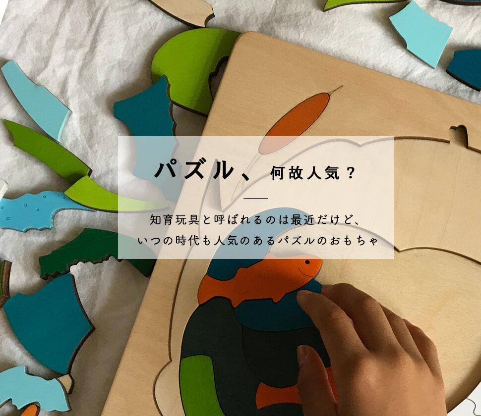 人気・おすすめ『パズル』おもちゃ選びの専門家が徹底解説!