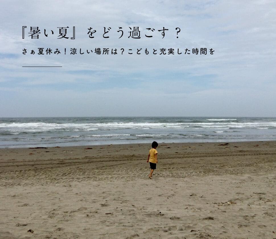 さぁ夏休み!こどもと『暑い夏』を楽しく有意義に!人気のおもちゃ・絵本・図鑑