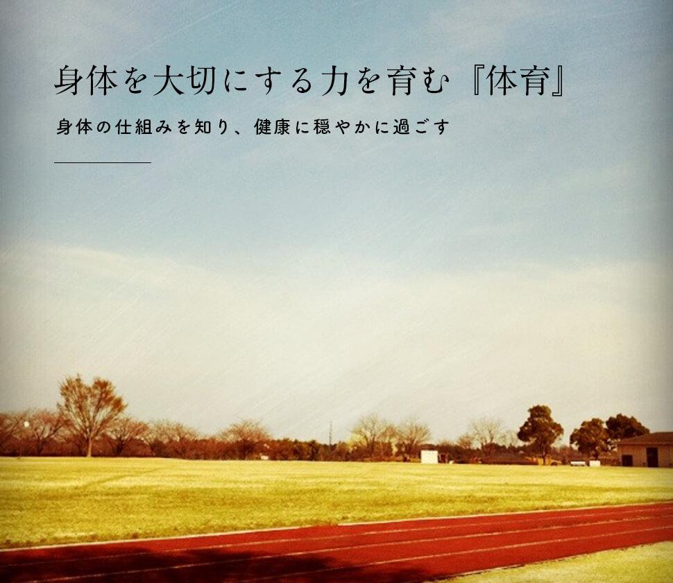 『体育』は運動だけじゃない!こどもの心身の成長を育むおすすめのおもちゃ・絵本