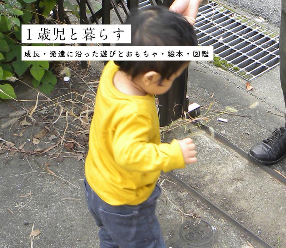 【1歳】成長・発達に沿ったおもちゃ・絵本・図鑑と遊び