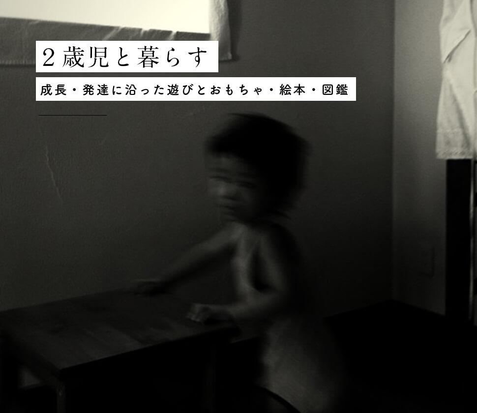 【2歳】成長・発達に沿ったおもちゃ・絵本・図鑑と遊び