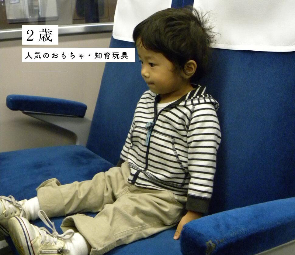 【2歳】人気の知育玩具・おもちゃ選び専門家がおすすめを徹底比較解説!