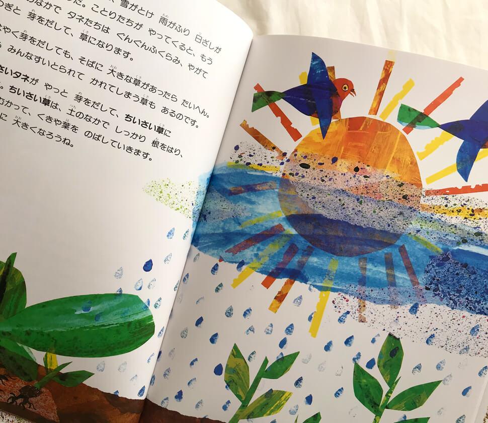 自然の営みも描かれた絵本