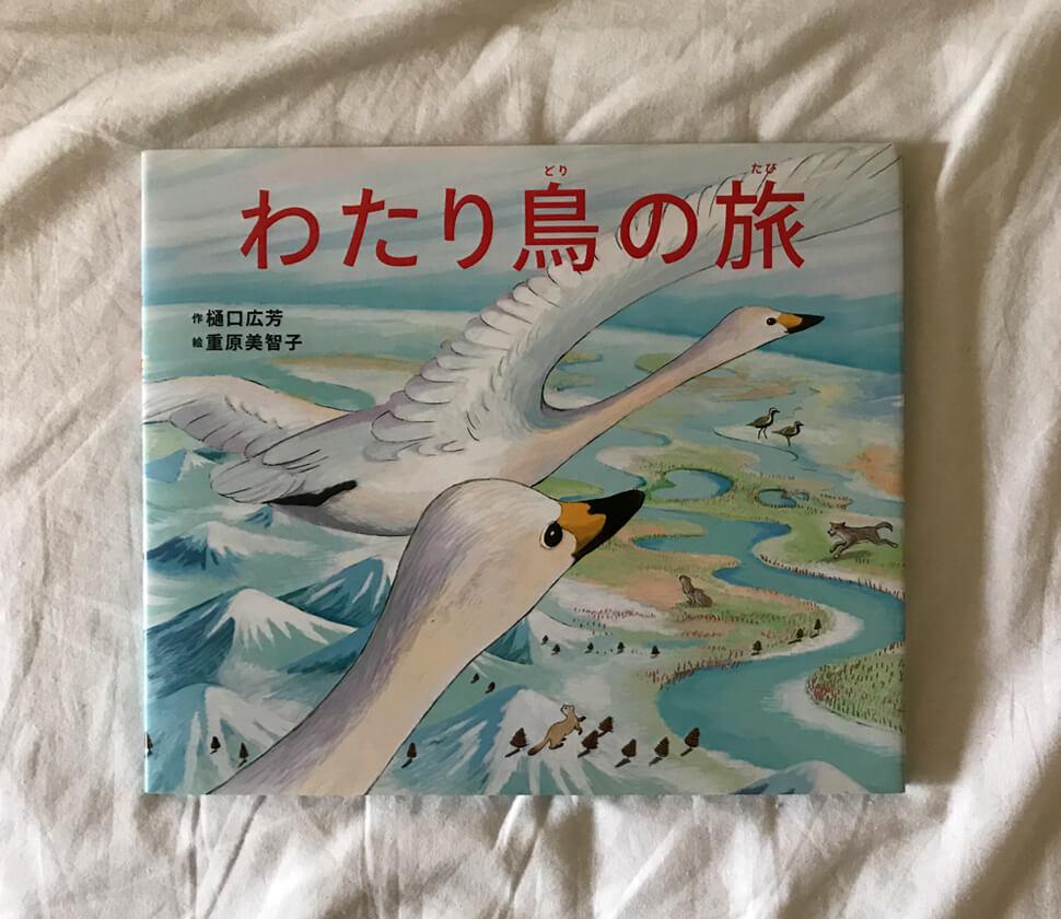 世界を移動する渡り鳥の生態