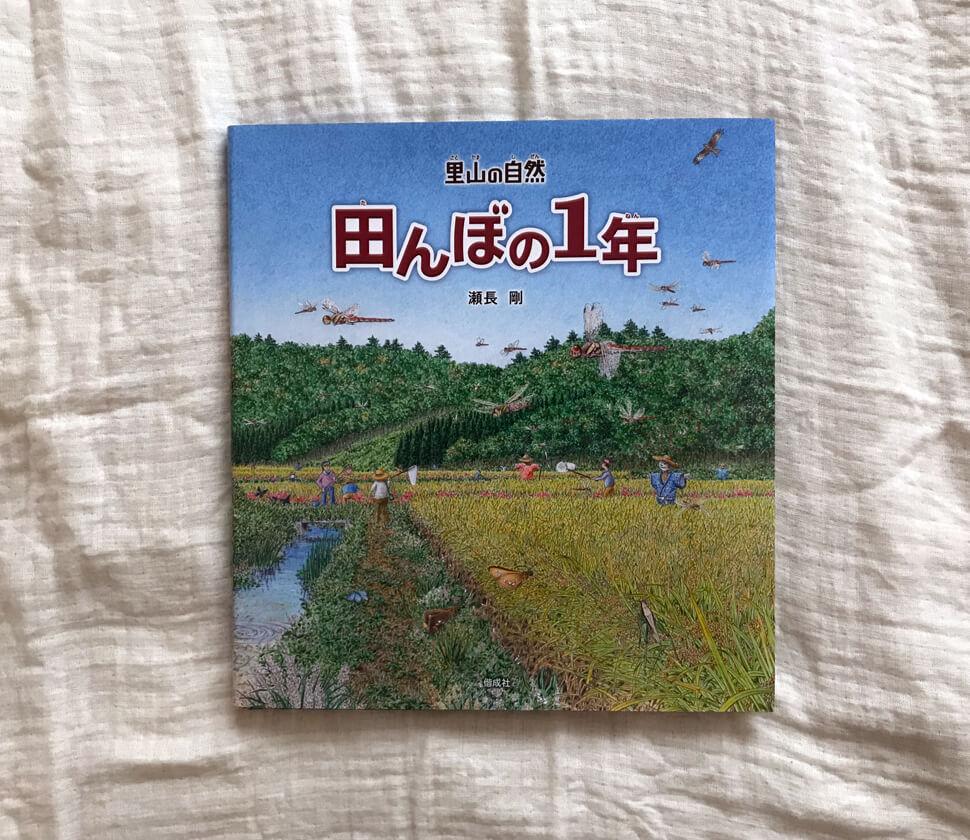 季節の変化・田んぼの環境、田んぼを中心とした生き物達の図鑑