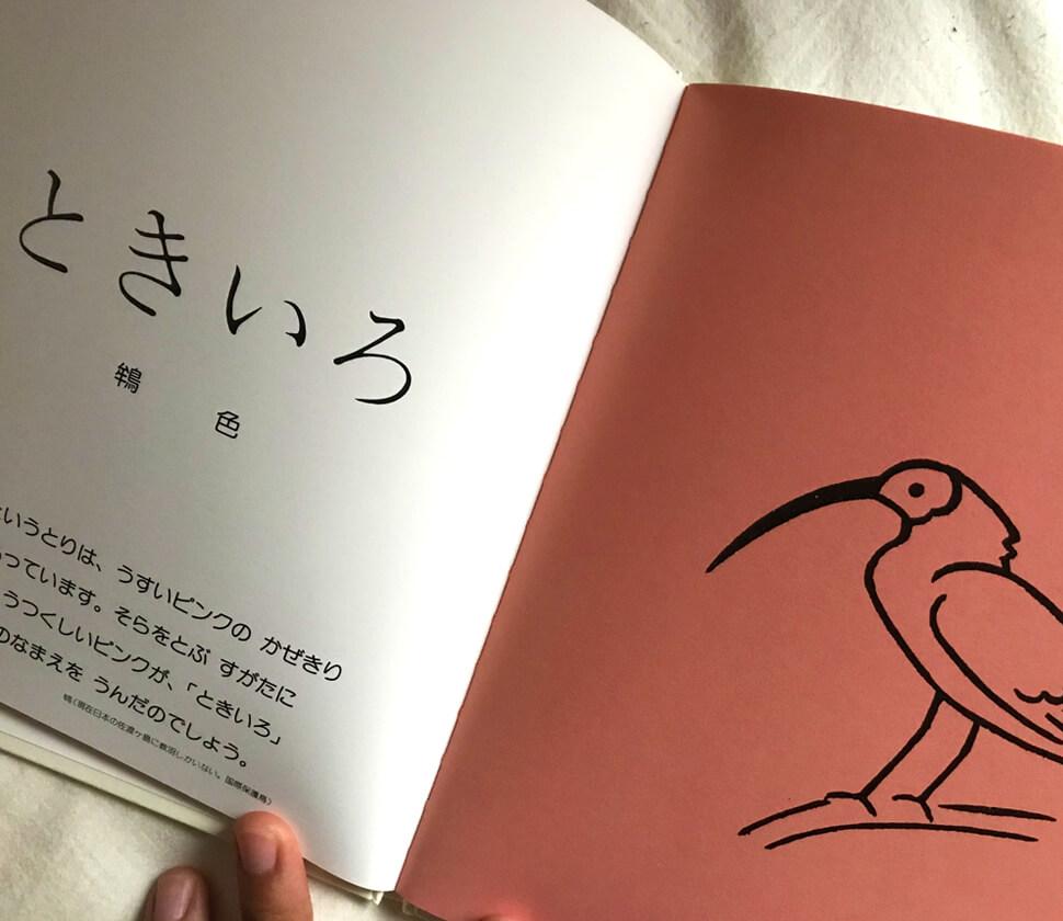 22の色(こどもの色彩感覚を育てる絵本シリーズ2)